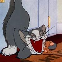 Tom và Jerry: Cuộc chiến bắt đầu