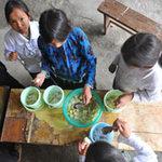 Giáo dục - du học - Học sinh vùng cao và bữa cơm canh đậu