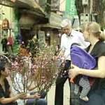 Tin tức trong ngày - Đại sứ Đan Mạch đi chợ hoa Tết ở Hà Nội