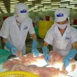 Thị trường - Tiêu dùng - Thêm yêu cầu mới cho cá tra xuất khẩu