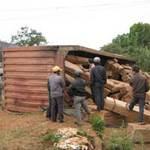 Tin tức trong ngày - Đắk Lắk: Xe container chở gỗ tông người