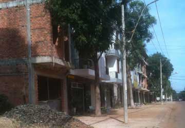 Bình Phước: Tiếp tục điều tra cán bộ bán rừng - 1