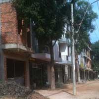 Bình Phước: Tiếp tục điều tra cán bộ bán rừng