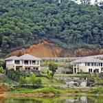 Tài chính - Bất động sản - Hô biến đất rừng thành thổ cư