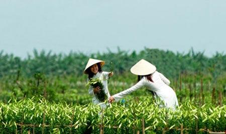 5 địa điểm chụp ảnh mùa xuân tuyệt đẹp ở Hà Nội - 3