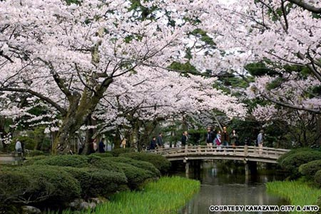Mướt mắt vẻ đẹp 8 khu vườn nổi tiếng - 11