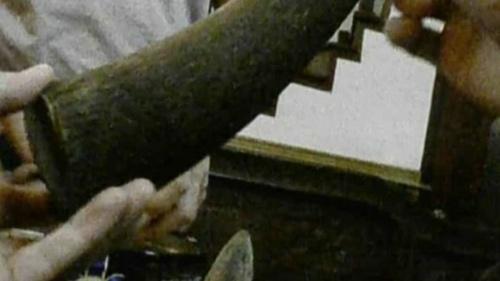 Báo Tây nói về cơn cuồng sừng tê giác ở VN - 2