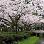 Du lịch - Mướt mắt vẻ đẹp 8 khu vườn nổi tiếng
