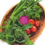 Ẩm thực - 4 loại rau kích thích vị giác