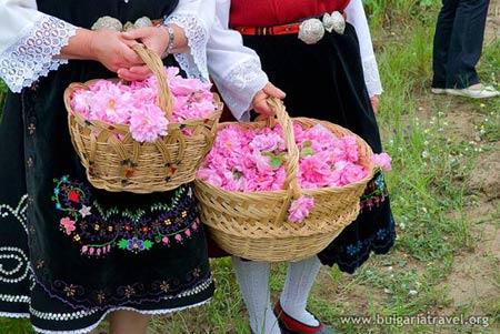 Đắm say trong hương sắc 'xứ sở hoa hồng' - 7