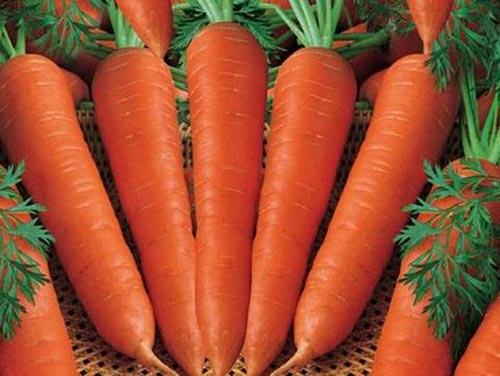 Cà rốt có thực sự giúp giảm cân? - 1