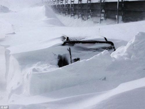 Nhật: Ôm con trong bão tuyết, bố chết cóng - 2