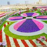 Du lịch - Thăm vườn hoa tự nhiên lớn nhất hành tinh