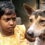 Tin tức trong ngày - Kết hôn với chó, rắn: Chuyện chỉ ở Ấn Độ