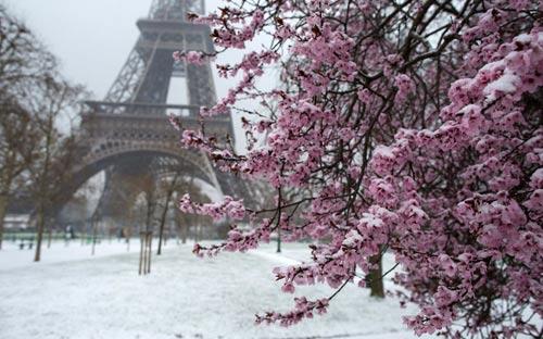 Giao thông châu Âu tê liệt vì bão tuyết - 14