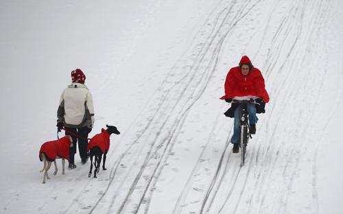 Giao thông châu Âu tê liệt vì bão tuyết - 8