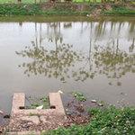 Tin tức trong ngày - HN: Xác hai mẹ con buộc vào nhau trôi sông