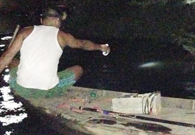 Đổ thuốc trừ sâu xuống sông Đồng Nai - 1