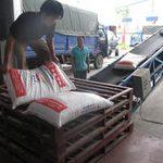Thị trường - Tiêu dùng - DN thức ăn chăn nuôi nội lại kêu cứu