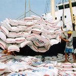 Thị trường - Tiêu dùng - Lúa gạo tiếp tục chịu sức ép giảm giá