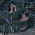 Ca nhạc - MTV - Nửa đêm, fan Việt ôm hàng rào ngóng sao Hàn