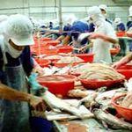 Thị trường - Tiêu dùng - Doanh nghiệp thủy sản thống nhất kiện DOC