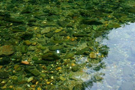 Vẻ đẹp hoang sơ của hồ Ba Bể - 7