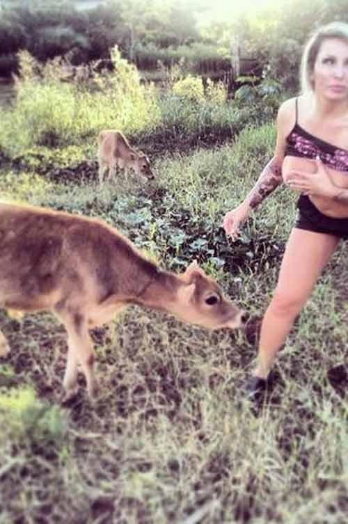 Cô gái ngực khủng... cho bê bú sữa - 4