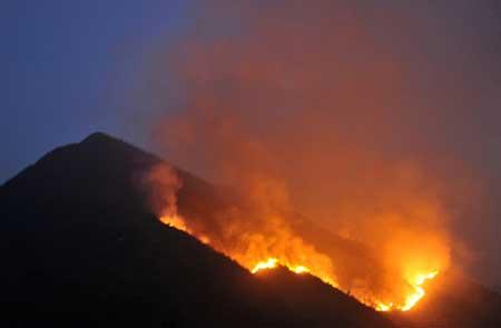 Hơn 700 người cứu rừng cháy ở Lai Châu - 1