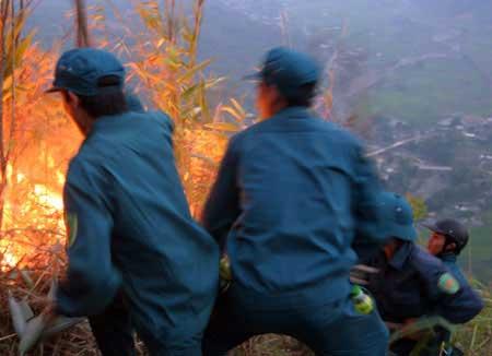 Hơn 700 người cứu rừng cháy ở Lai Châu - 4