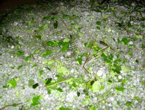 Lào Cai: Lại mưa đá như... ném gạch - 1