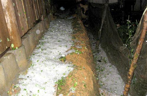 Lào Cai: Lại mưa đá như... ném gạch - 6