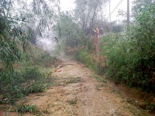 Lào Cai: Lại mưa đá như... ném gạch - 7