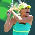 Thể thao - Sharapova - Jankovic: Sức mạnh vũ bão (BK Miami Masters)