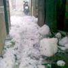 Lào Cai: Lại mưa đá như... ném gạch