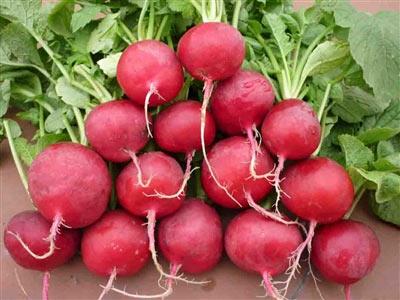 4 'thực phẩm' giúp phục hồi sức khỏe sau ốm - 4