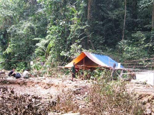 5 phu trầm bị giết: Tung quân phá án - 1