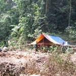 Tin tức trong ngày - 5 phu trầm bị giết: Tung quân phá án