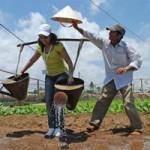 Du lịch Việt Nam - Nông dân làm du lịch