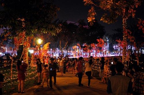 Công viên Tân Phú lung linh với 500 nghìn đèn led - 10