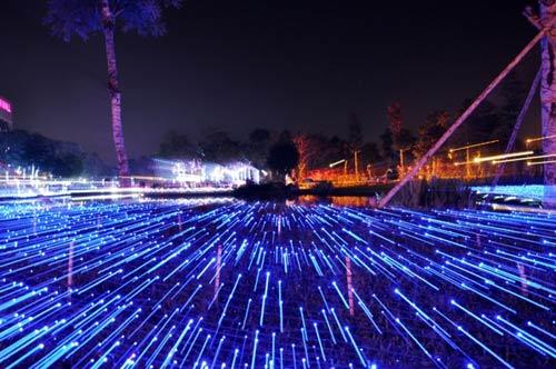Công viên Tân Phú lung linh với 500 nghìn đèn led - 11