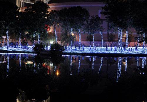 Công viên Tân Phú lung linh với 500 nghìn đèn led - 4