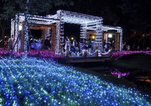 Công viên Tân Phú lung linh với 500 nghìn đèn led - 6