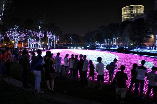 Công viên Tân Phú lung linh với 500 nghìn đèn led - 8