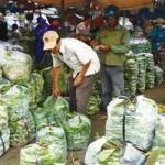 Thị trường - Tiêu dùng - Rau củ, thuỷ hải sản ế ẩm, giảm giá