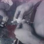 Sức khỏe đời sống - Ngày rời bỏ ma túy không còn xa