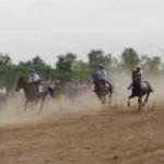 Tin tức trong ngày - Tìm lại vó câu trường đua