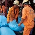 Thị trường - Tiêu dùng - Xuất khẩu gạo 2014: Cạnh tranh khốc liệt về giá