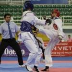 Thể thao - TTVN sẽ tranh tài ở khoảng 22 môn tại ASIAD 2014