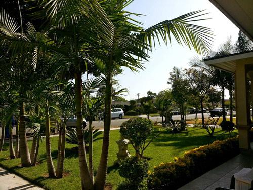 Thăm nhà Quang Lê ở Mỹ - 1